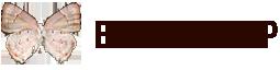 Echion Group logo