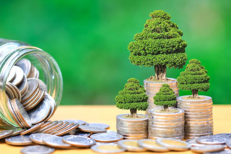 Image symbolizing the Green Economy